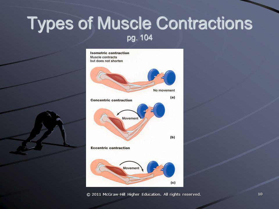 Types of Muscle Contractions pg. 104