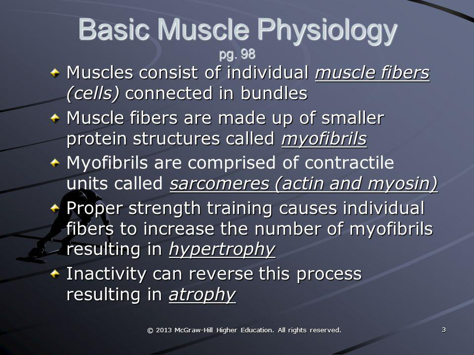 Basic Muscle Physiology pg. 98