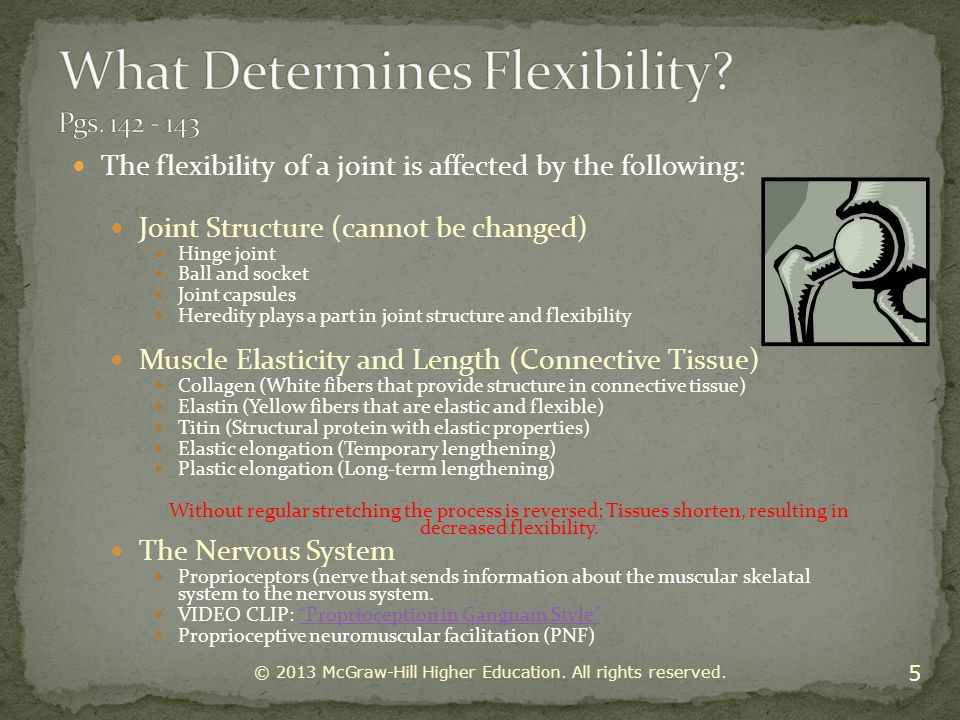 What Determines Flexibility Pgs. 142 - 143