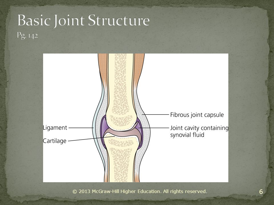 Basic Joint Structure Pg. 142
