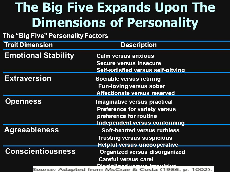 The Big Five Expands Upon The Dimensions of Personality