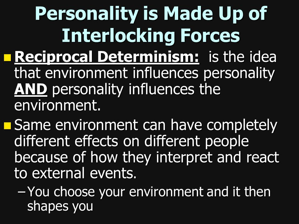 Personality is Made Up of Interlocking Forces