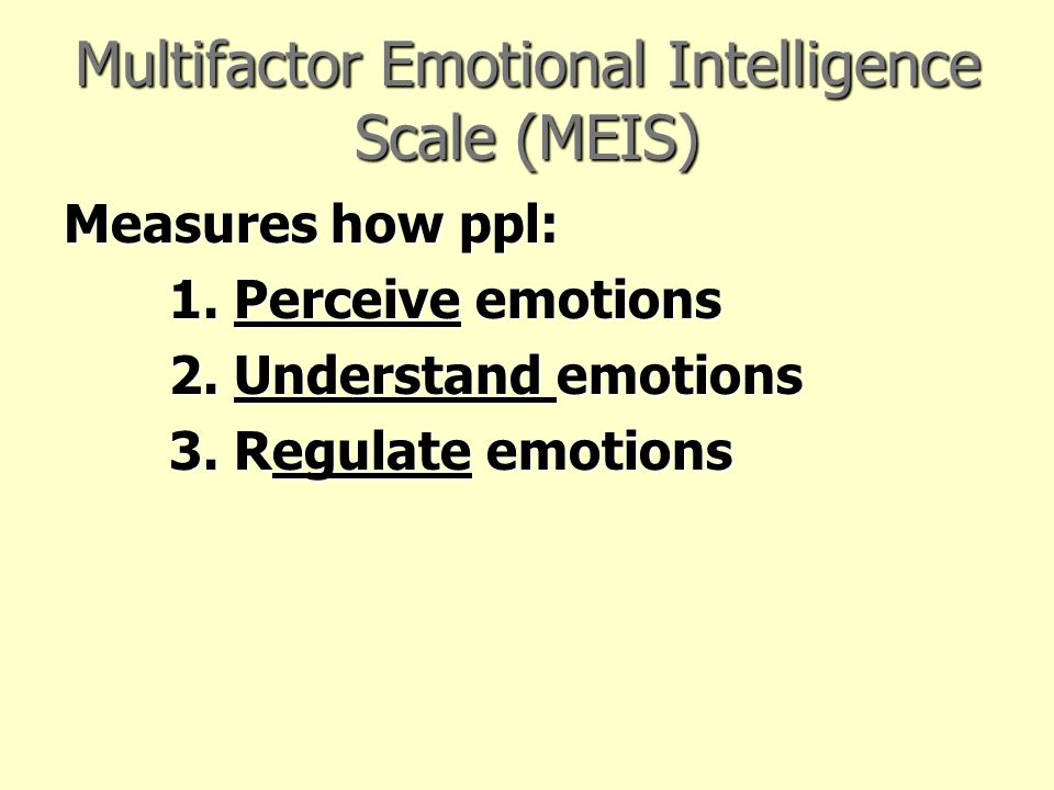 Multifactor Emotional Intelligence Scale (MEIS)