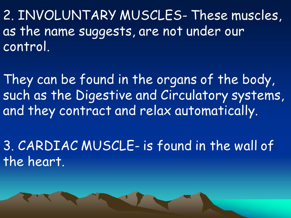 2. INVOLUNTARY MUSCLES- These muscles, as the name suggests, are not under our control.