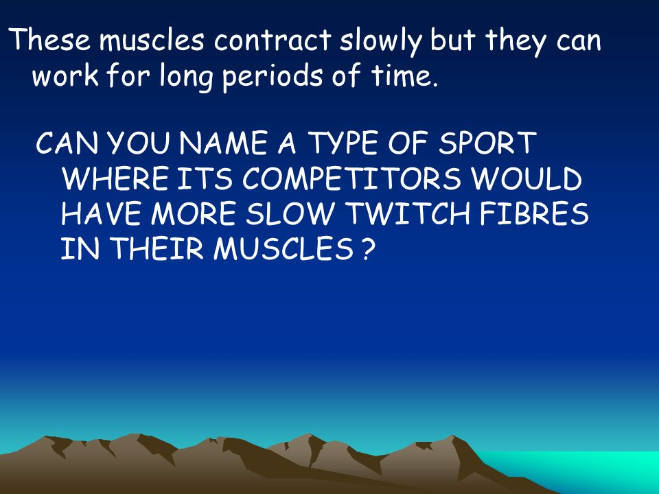 These muscles contract slowly but they can work for long periods of time.
