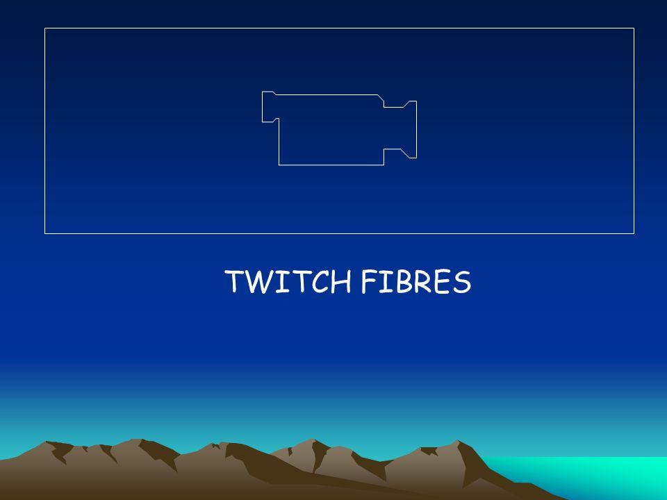 TWITCH FIBRES
