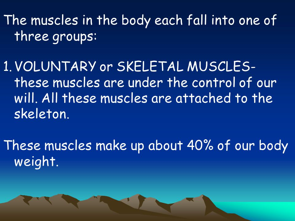 The muscles in the body each fall into one of three groups: