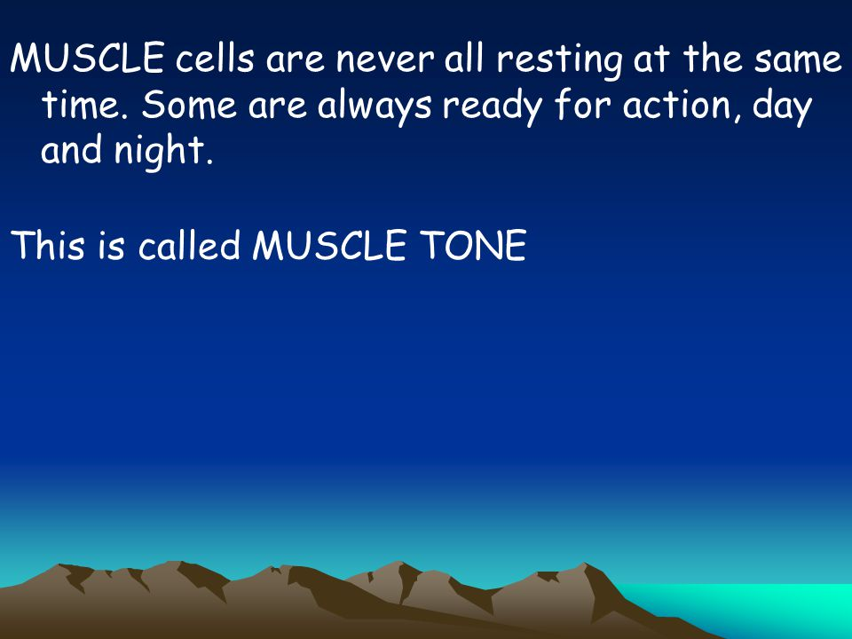 MUSCLE cells are never all resting at the same time