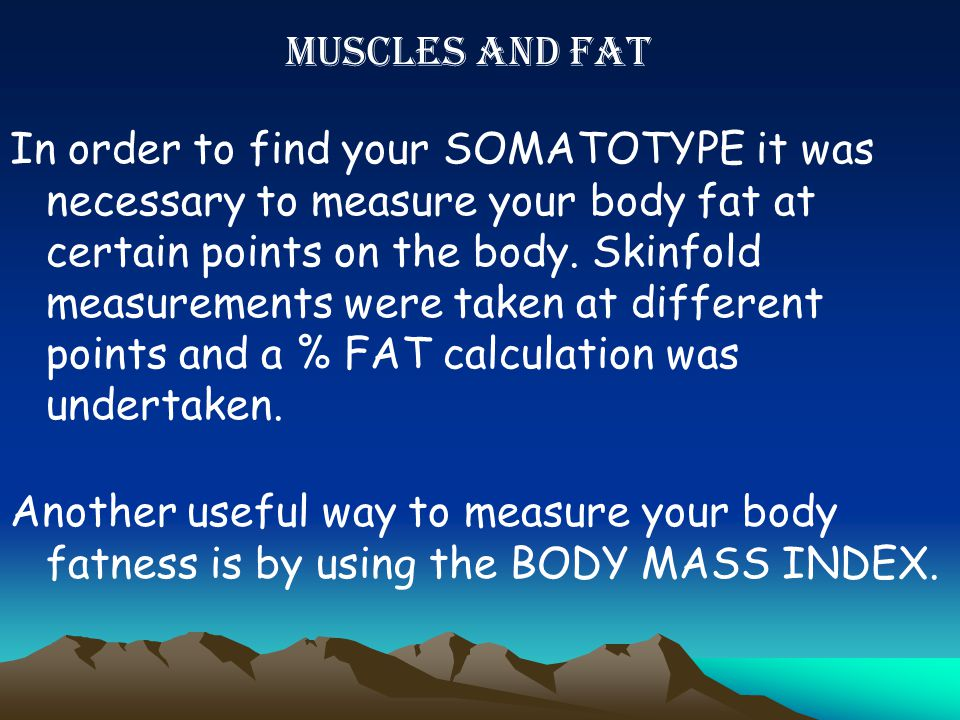 MUSCLES AND FAT