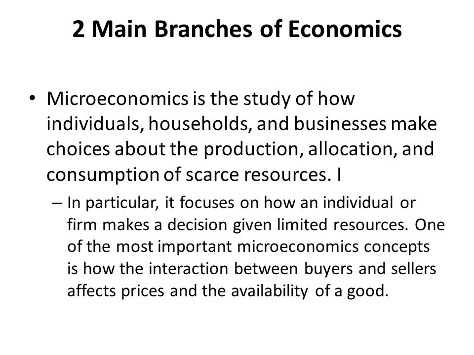 2 Main Branches of Economics