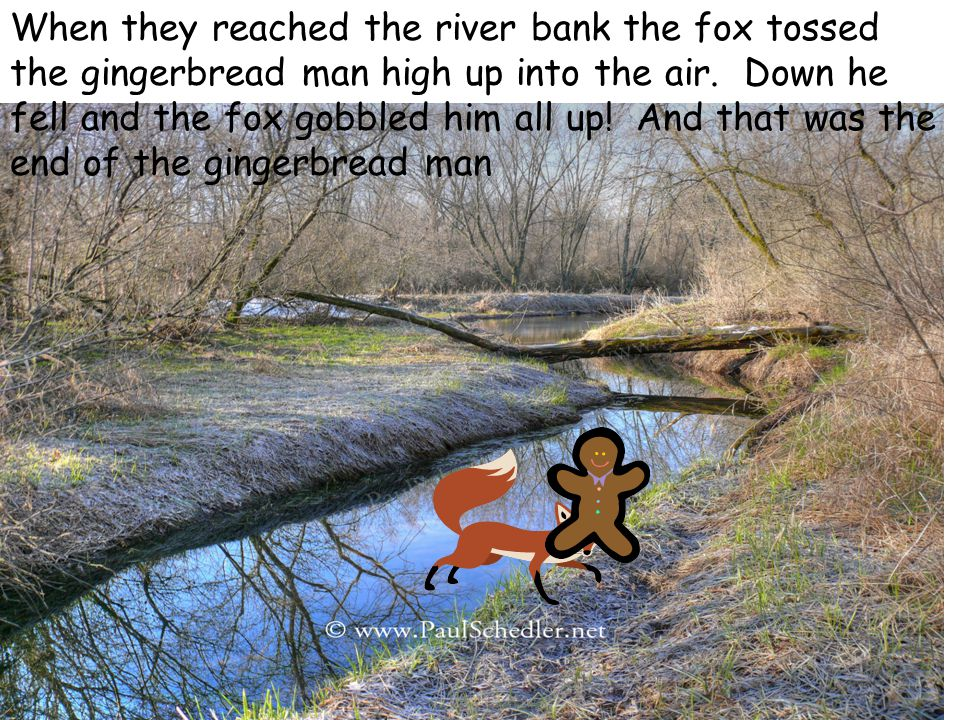When they reached the river bank the fox tossed the gingerbread man high up into the air.