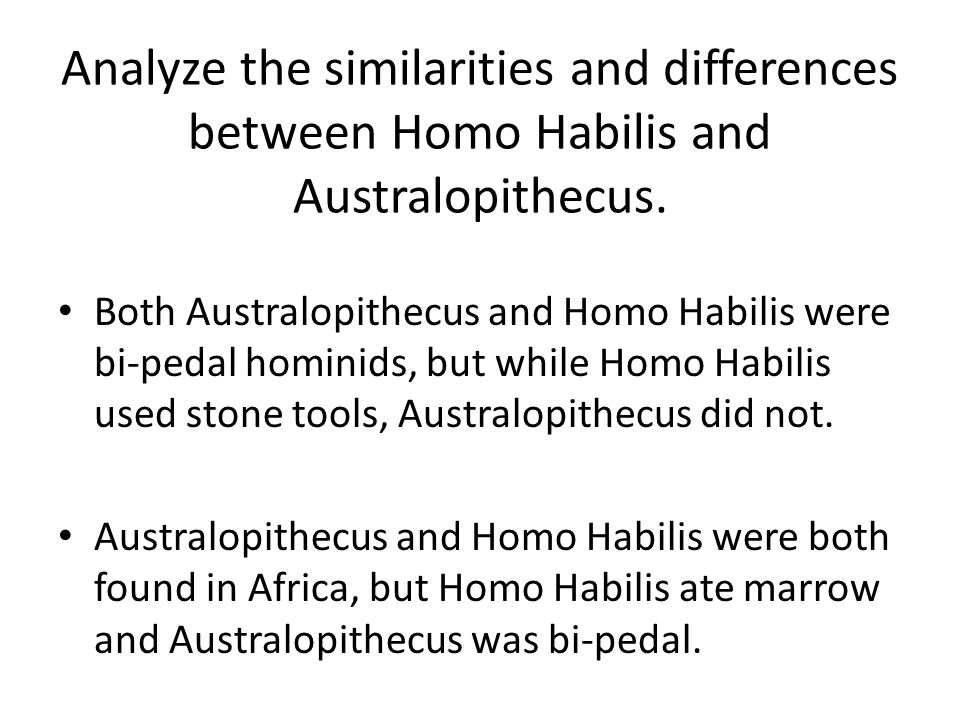 Analyze the similarities and differences between Homo Habilis and Australopithecus.