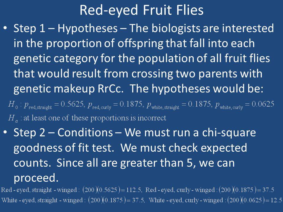 Red-eyed Fruit Flies