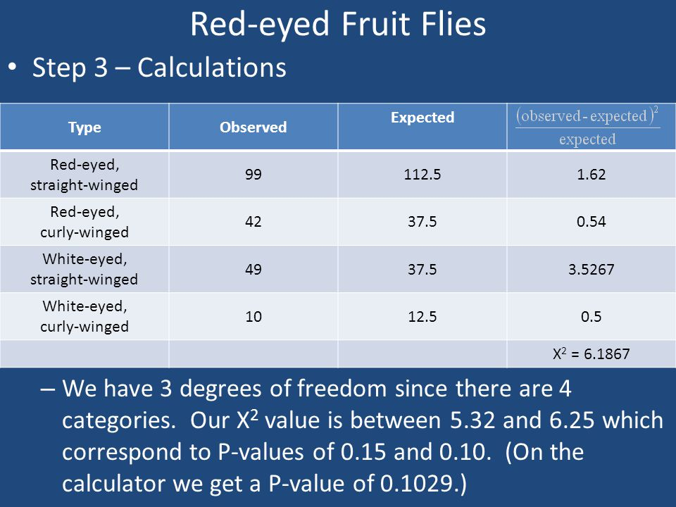 Red-eyed Fruit Flies Step 3 – Calculations