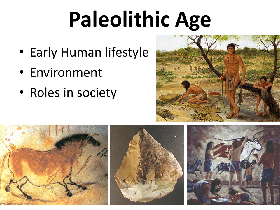 Paleolithic Age Early Human lifestyle Environment Roles in society