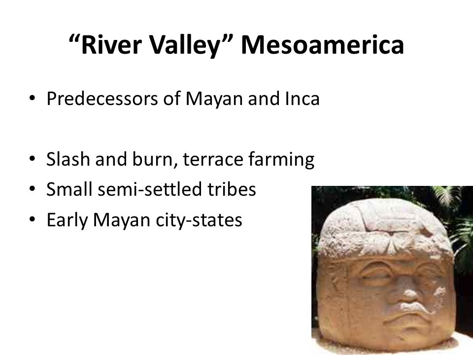 agriculture in mesoamerica essay The mesoamerican, andean, and bajio civilizations in between 1500 and 1700 essay,  a place with well distinguished typology backed by a functional agriculture land.