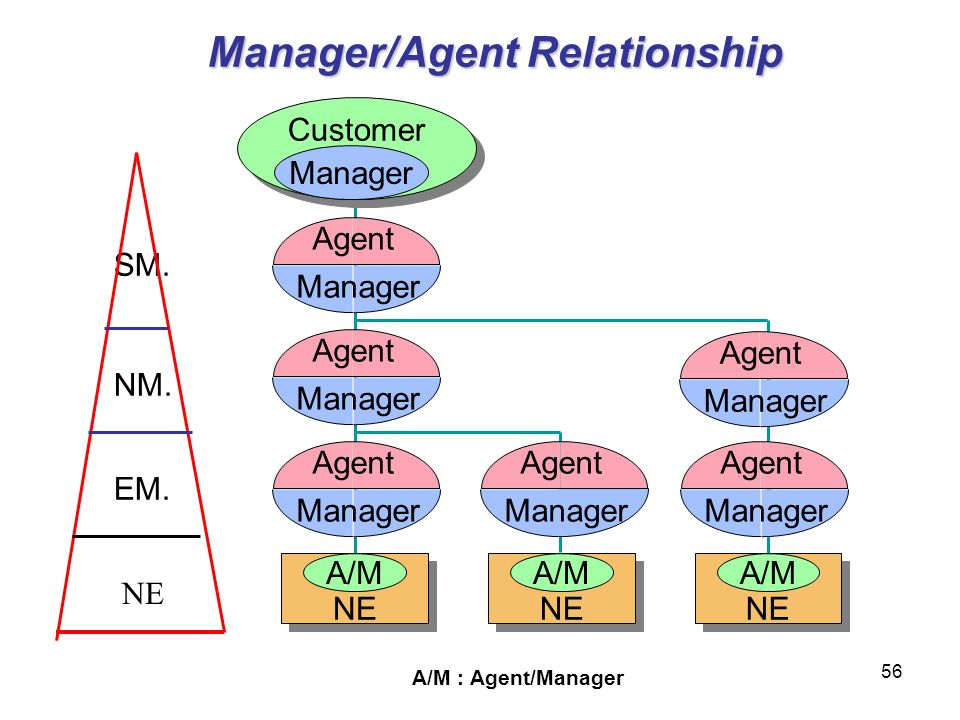 Manager/Agent Relationship