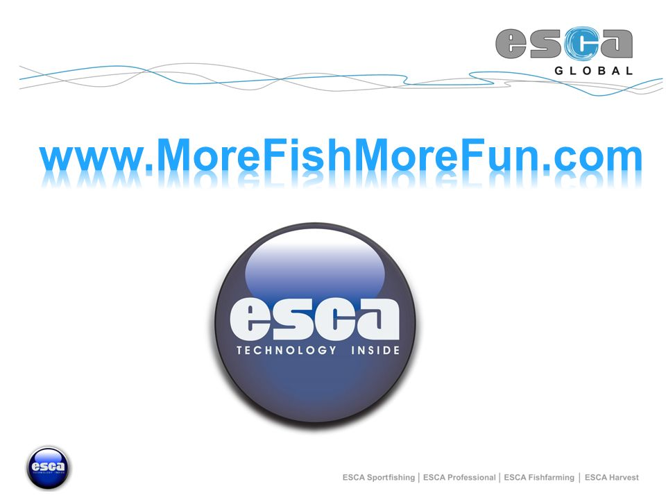 www.MoreFishMoreFun.com
