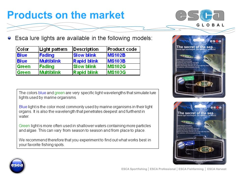 Products on the market Esca lure lights are available in the following models: