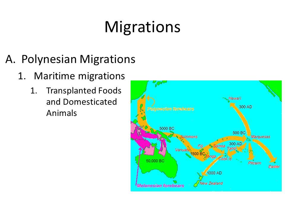 Migrations Polynesian Migrations Maritime migrations