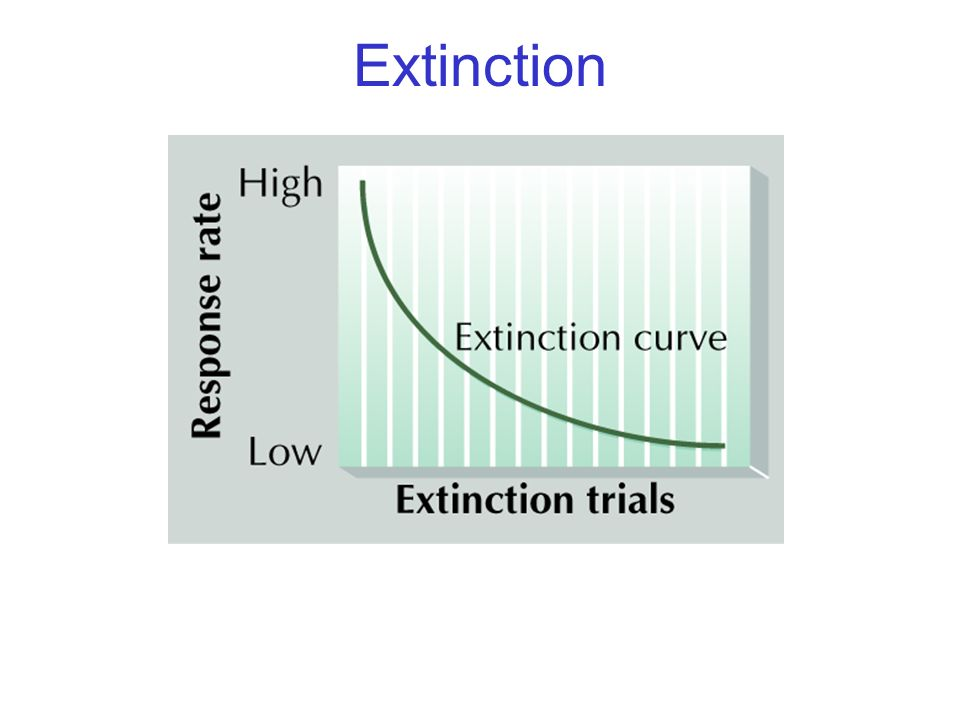 Extinction © 2004 John Wiley & Sons, Inc.