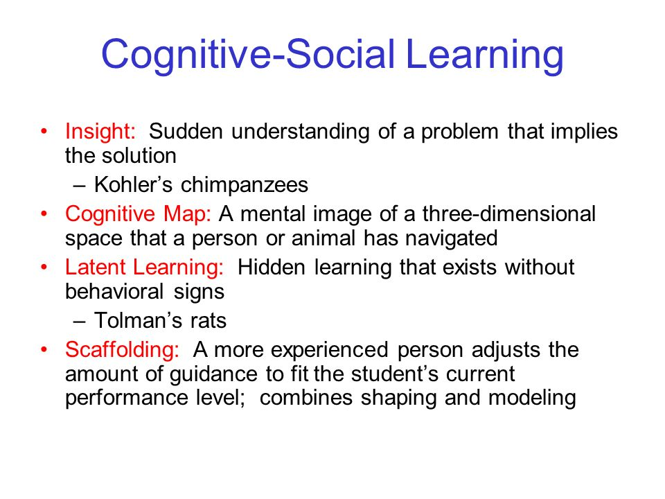 Cognitive-Social Learning
