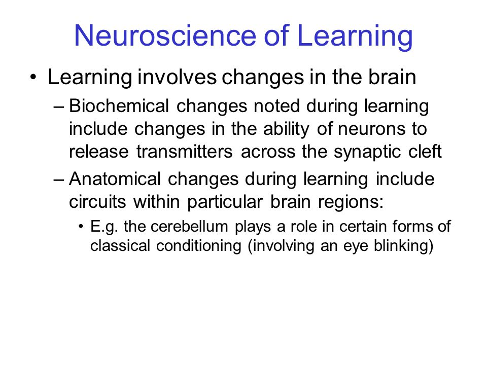 Neuroscience of Learning