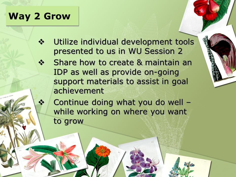 Way 2 Grow Utilize individual development tools presented to us in WU Session 2.