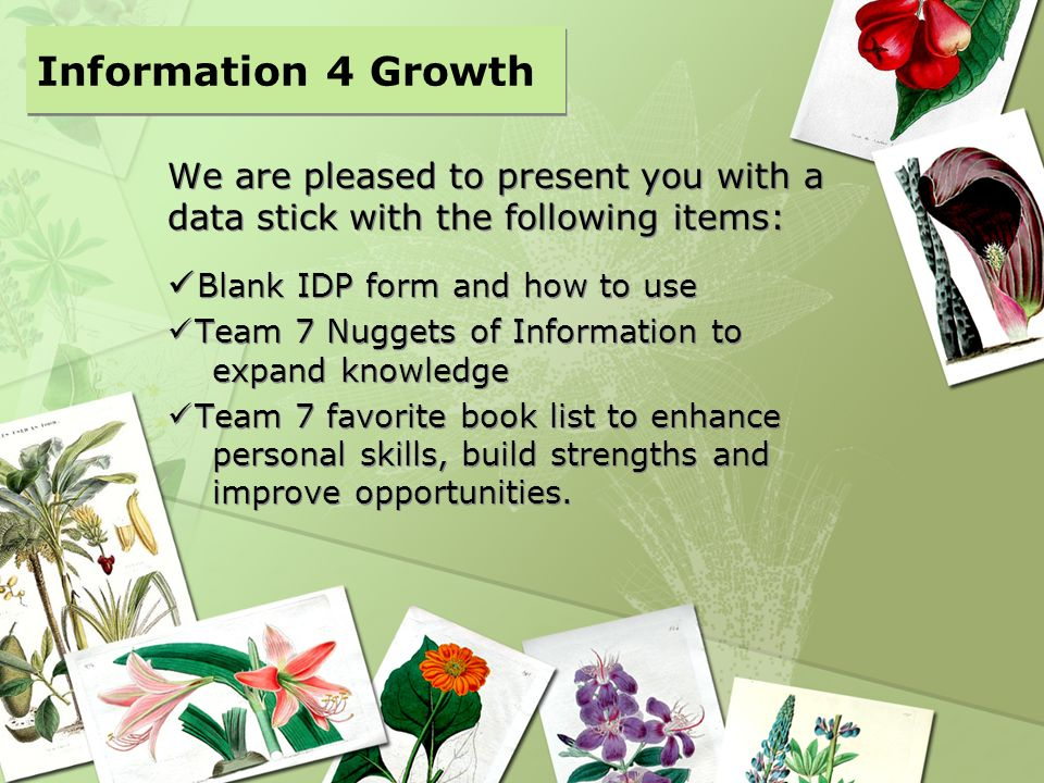 Information 4 Growth We are pleased to present you with a data stick with the following items: Blank IDP form and how to use.