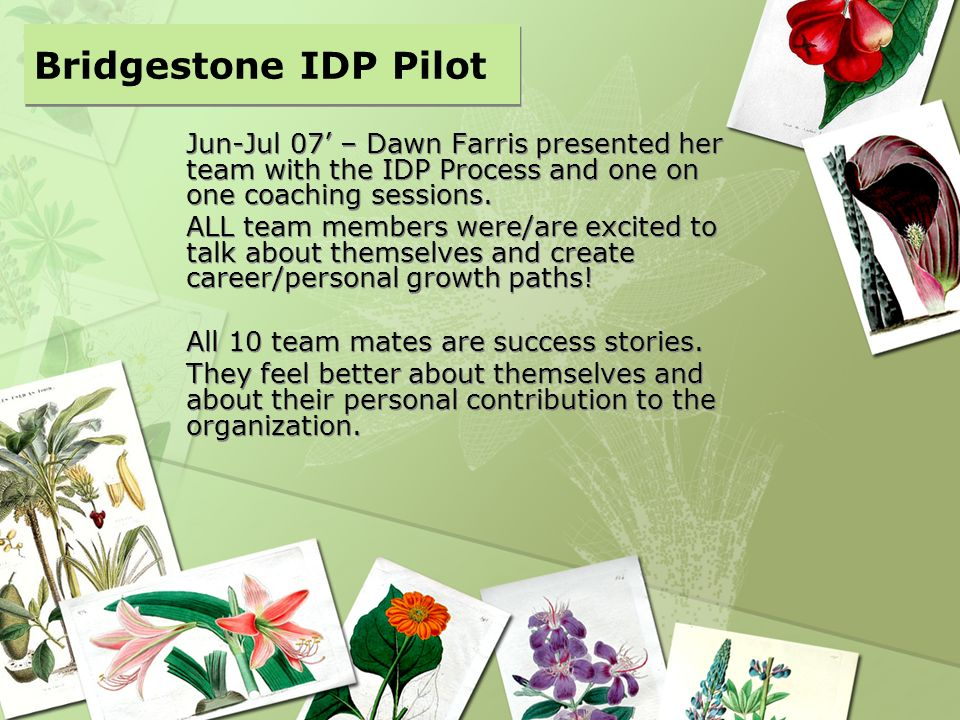 Bridgestone IDP Pilot Jun-Jul 07' – Dawn Farris presented her team with the IDP Process and one on one coaching sessions.