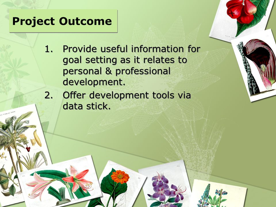 Project Outcome Provide useful information for goal setting as it relates to personal & professional development.