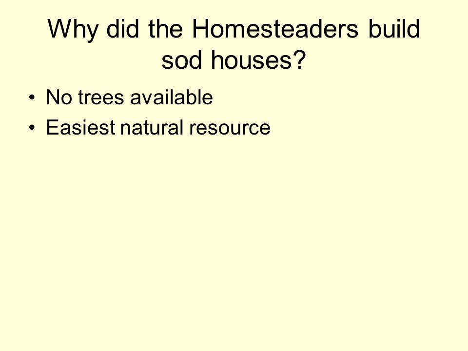 Why did the Homesteaders build sod houses