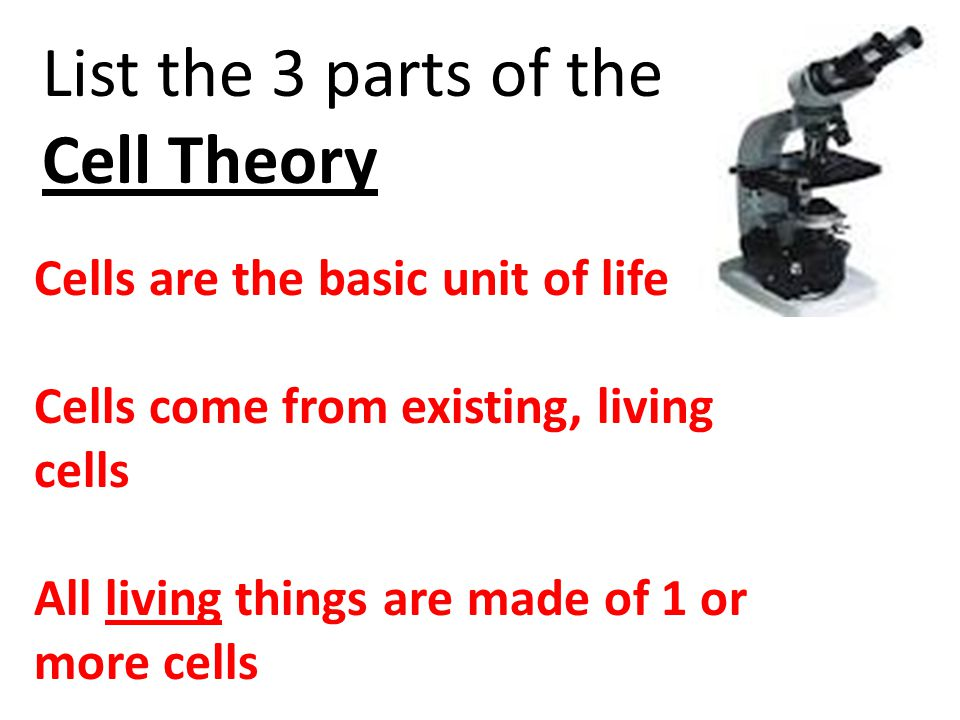 List the 3 parts of the Cell Theory