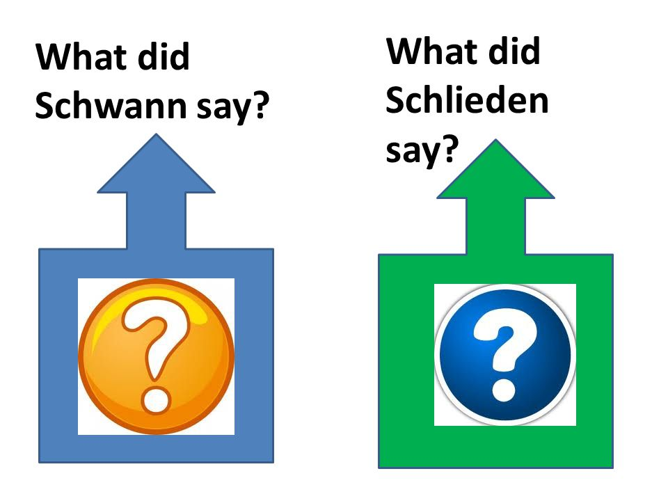 What did Schlieden say What did Schwann say