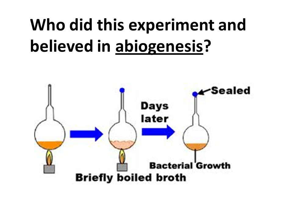 Who did this experiment and believed in abiogenesis