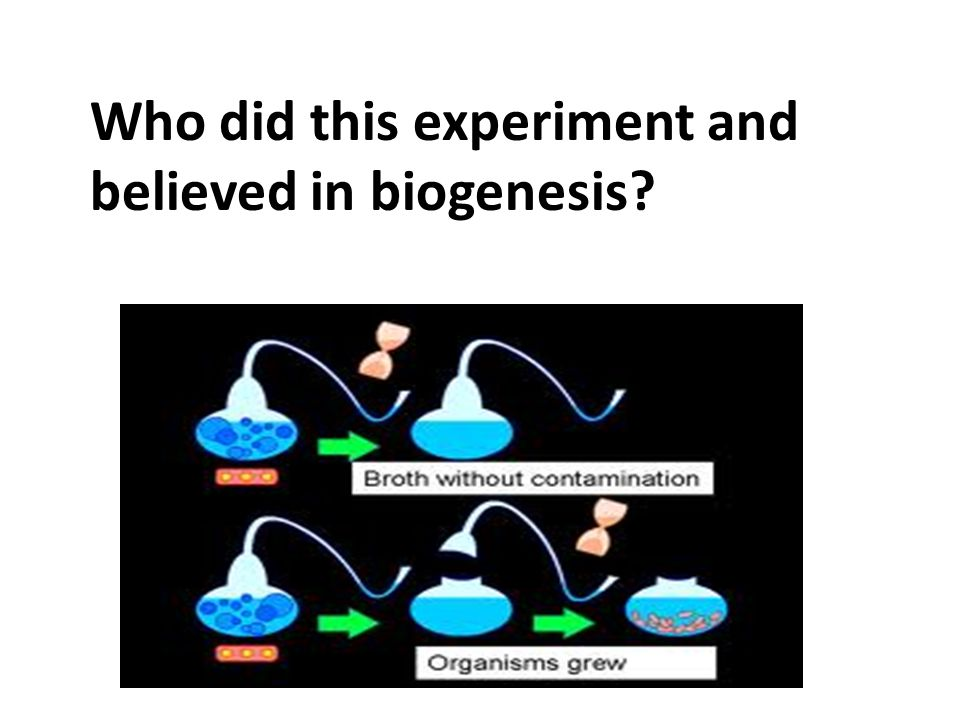 Who did this experiment and believed in biogenesis