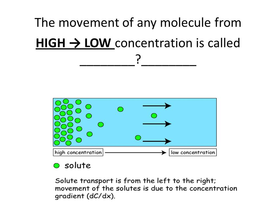 The movement of any molecule from
