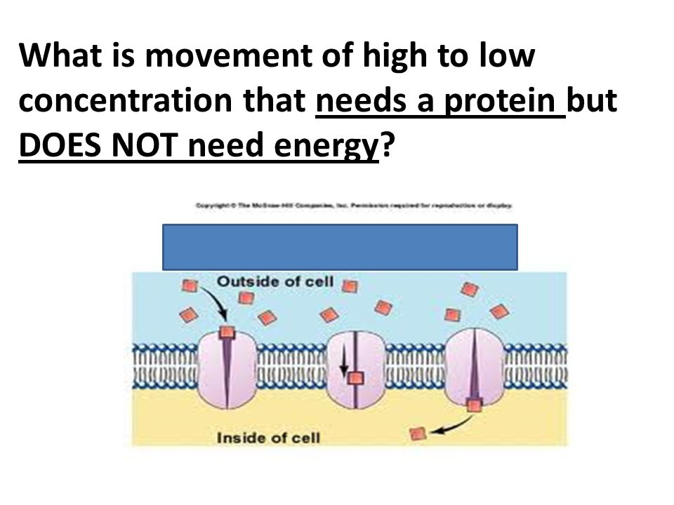 What is movement of high to low concentration that needs a protein but DOES NOT need energy