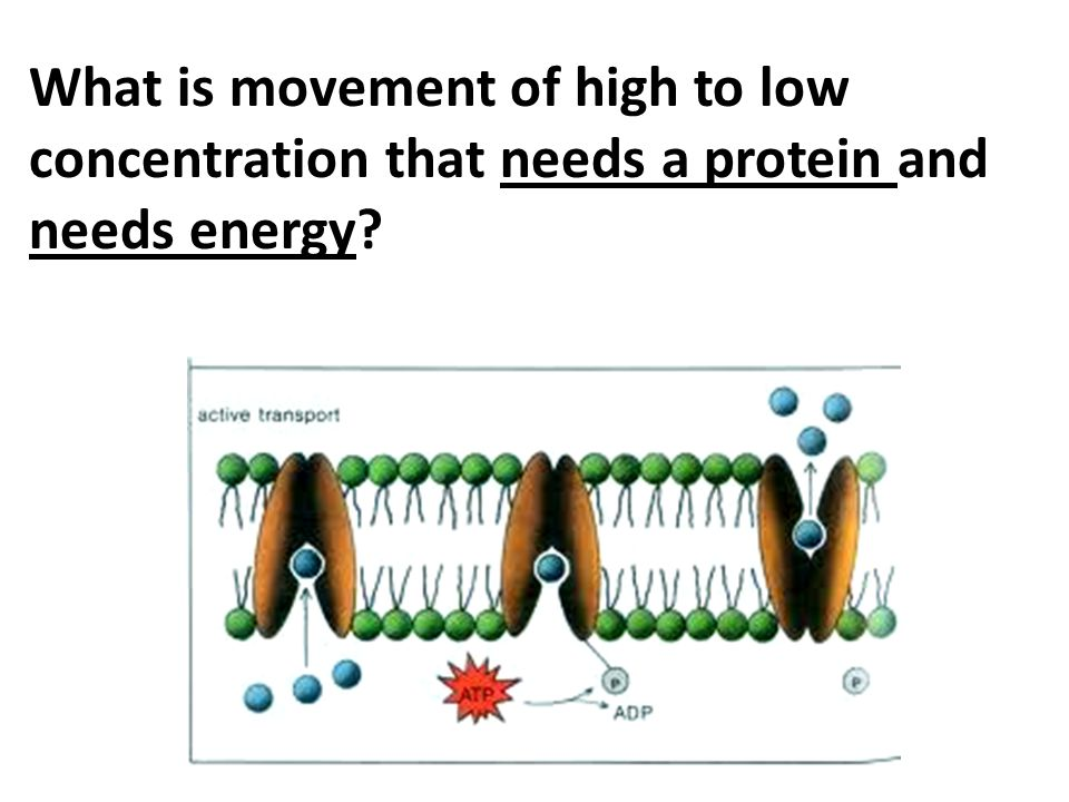 What is movement of high to low concentration that needs a protein and needs energy