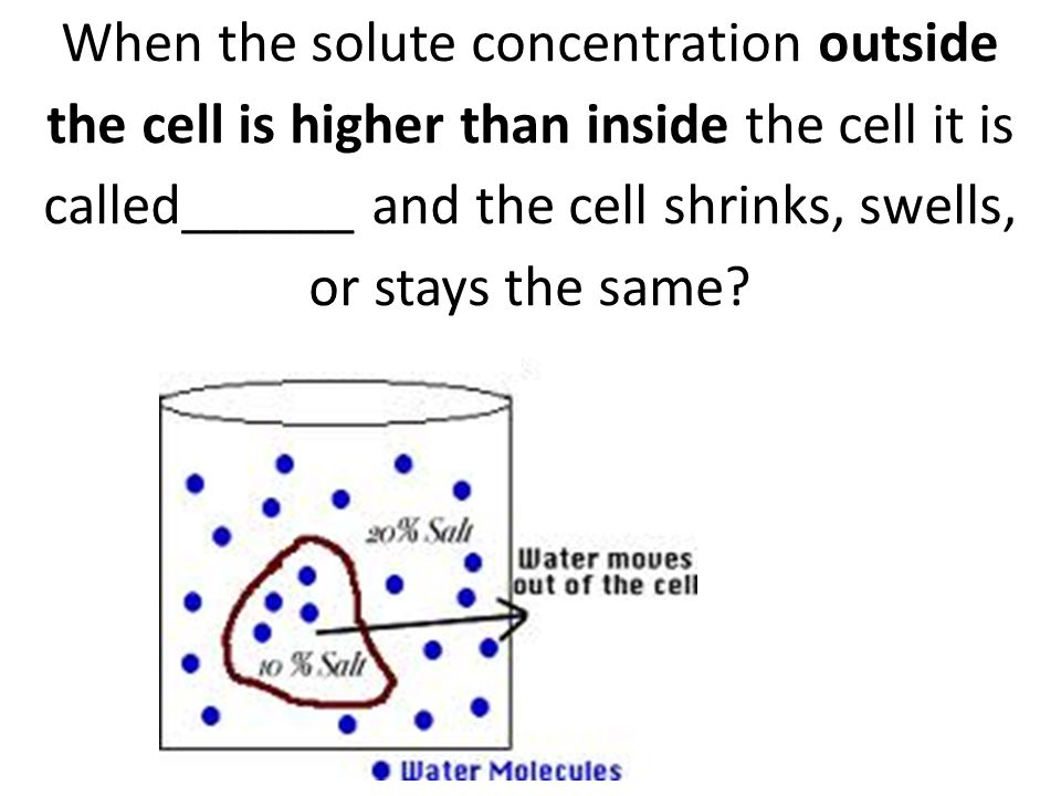 When the solute concentration outside the cell is higher than inside the cell it is called______ and the cell shrinks, swells, or stays the same
