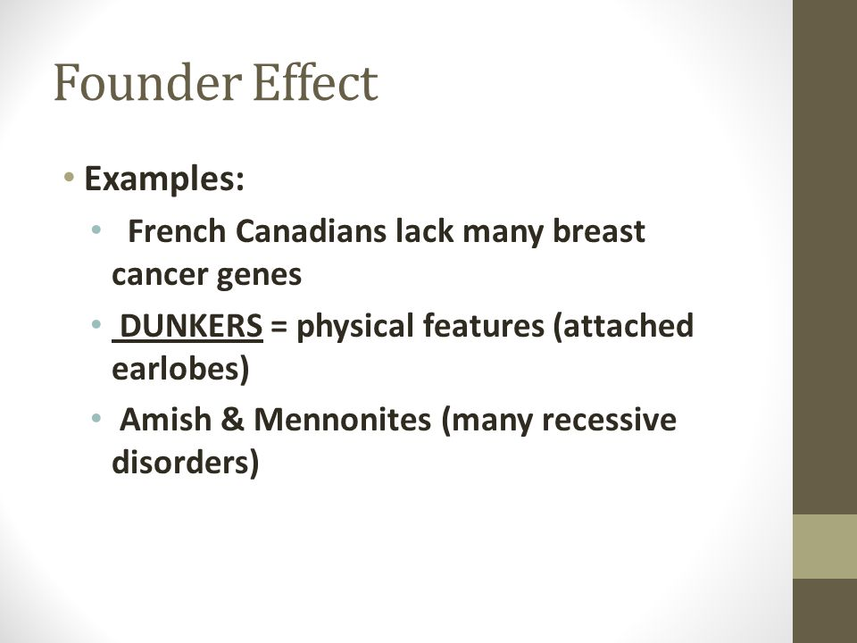 Founder Effect Examples: