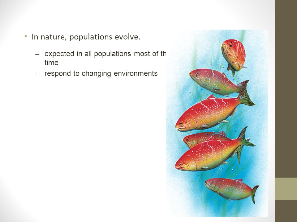 In nature, populations evolve.