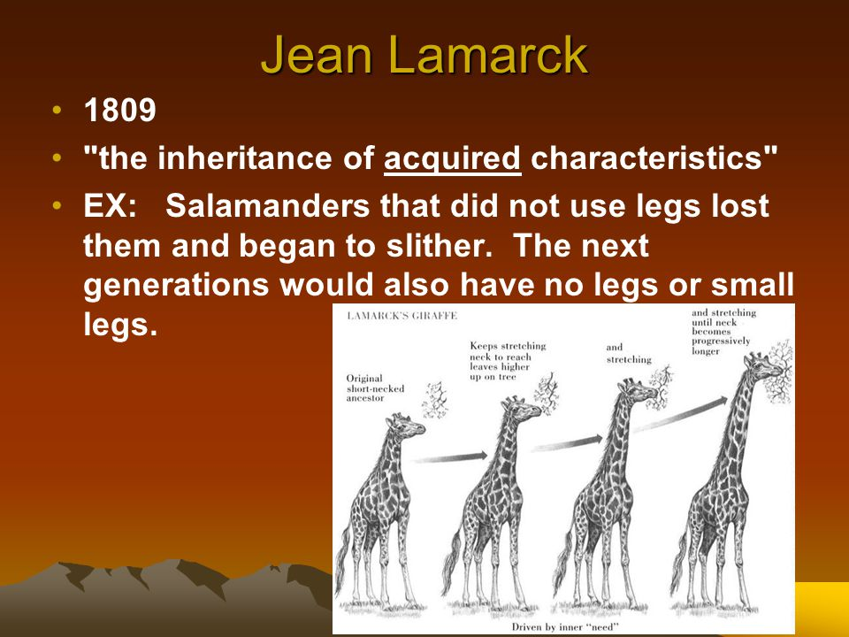 Jean Lamarck 1809 the inheritance of acquired characteristics