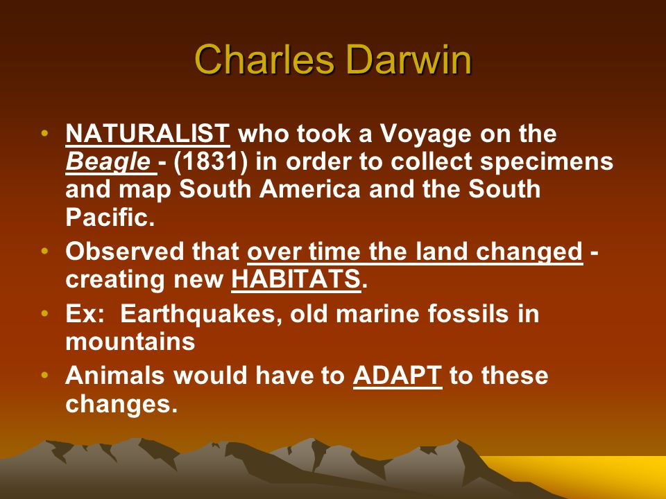 Charles Darwin NATURALIST who took a Voyage on the Beagle - (1831) in order to collect specimens and map South America and the South Pacific.