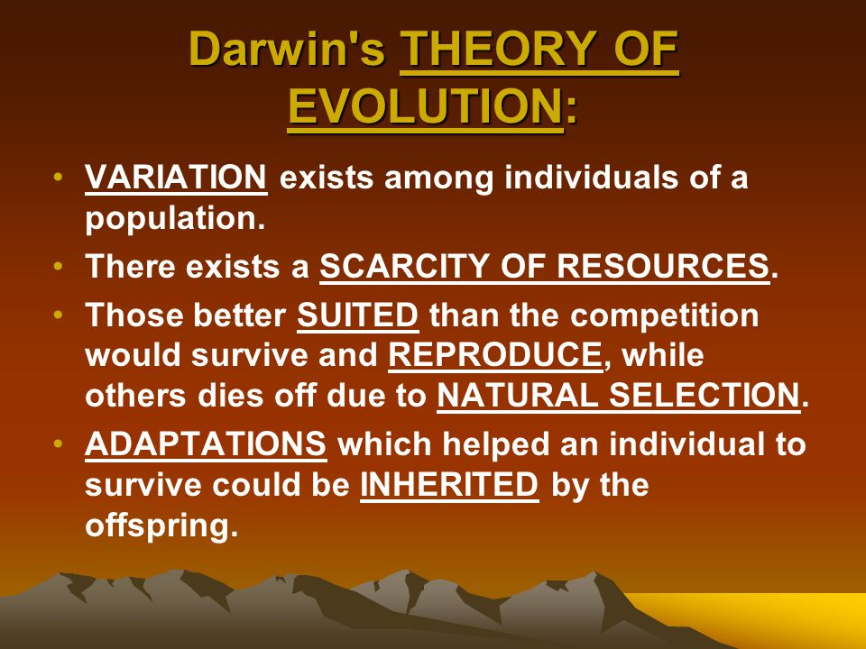 Darwin s THEORY OF EVOLUTION: