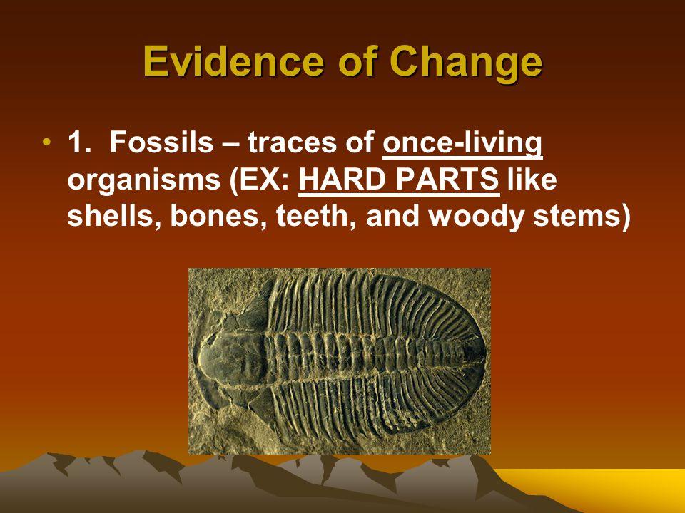Evidence of Change 1.