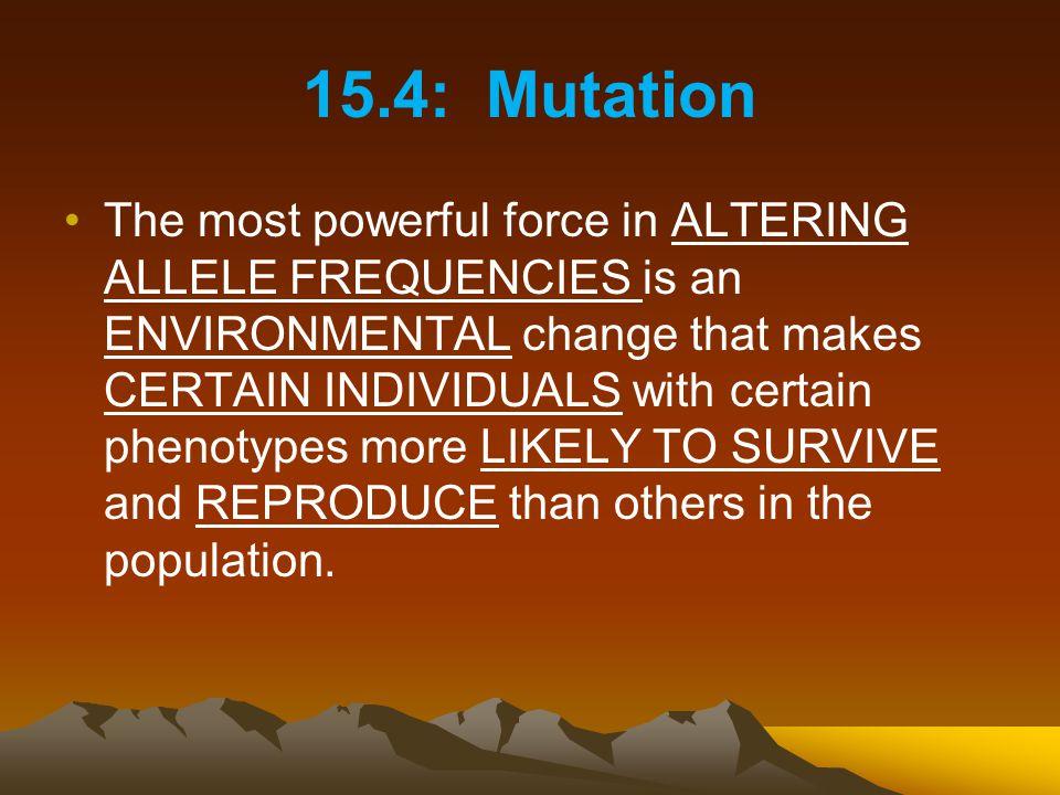 15.4: Mutation