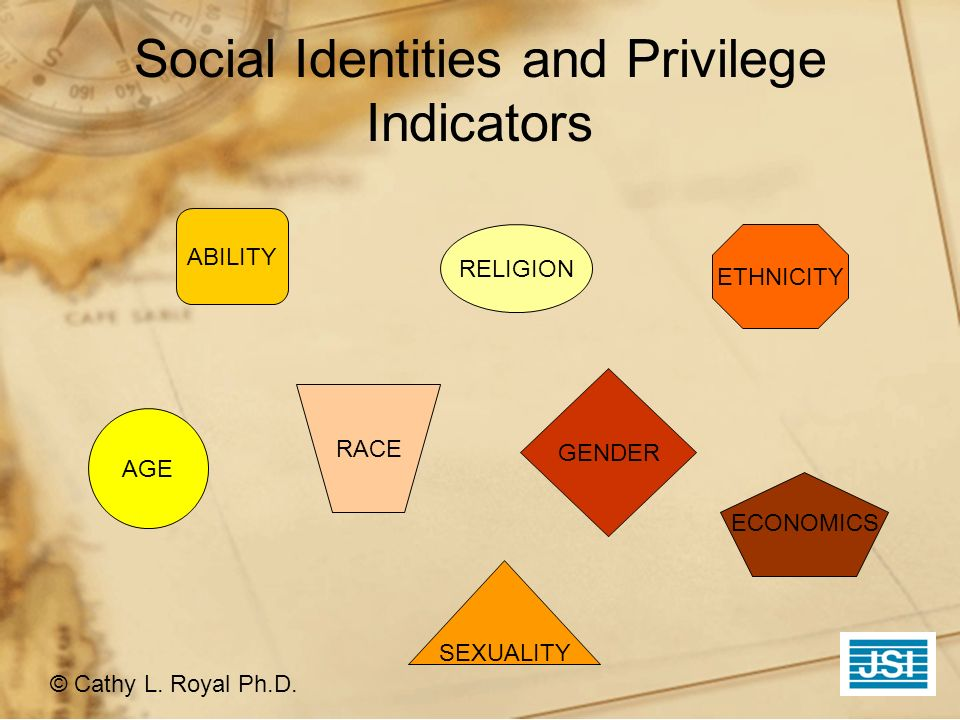 Social Identities and Privilege Indicators