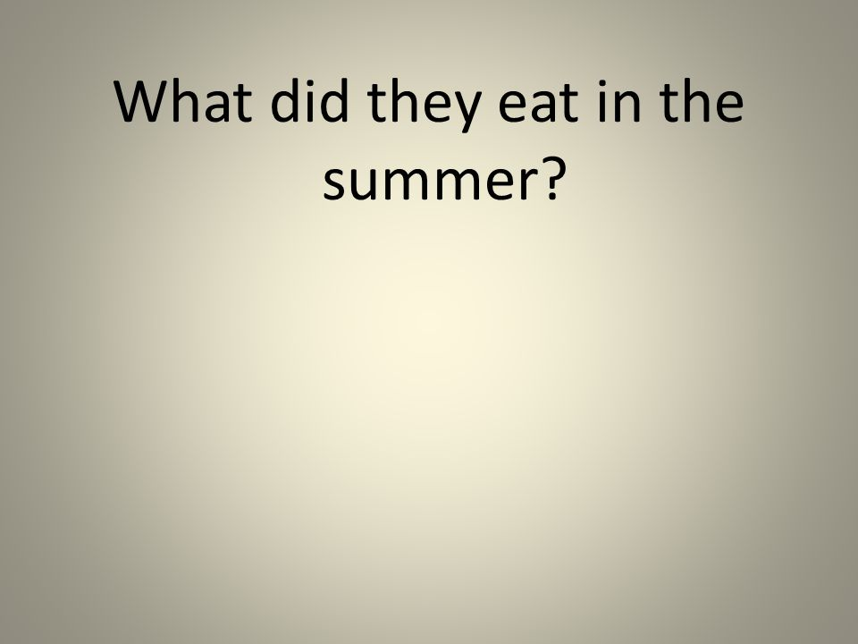 What did they eat in the summer