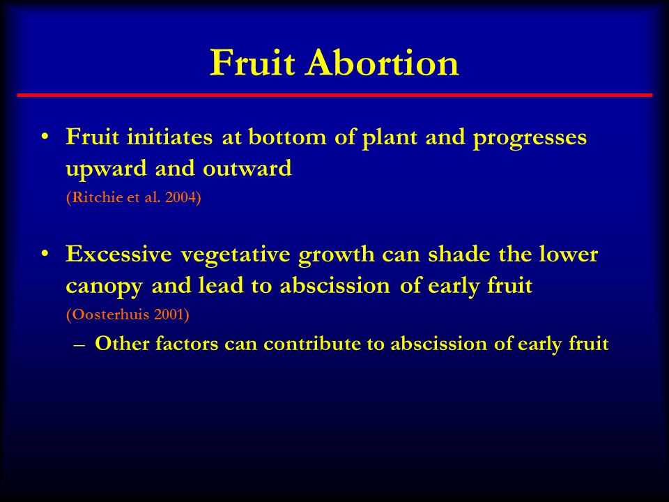 Fruit Abortion Fruit initiates at bottom of plant and progresses upward and outward. (Ritchie et al. 2004)